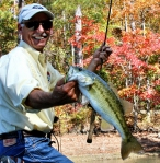 Scap of Transducer Shield and Protector with an Alabama Spotted Bass