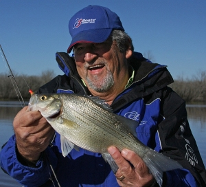 Bill's favorite lure for white bass is the Road Runner