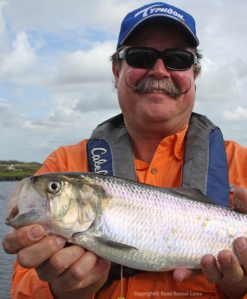 American Shad visit the St Johns River once a year.